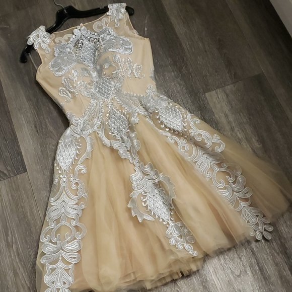 Chotronette Dresses & Skirts - Silver Lace Cream Beige Tulle Dress by Chotronette